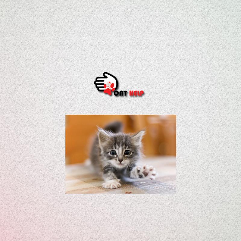 логотип для сайта и группы вк - cat.help фото f_83759db41e3bf8e3.jpg