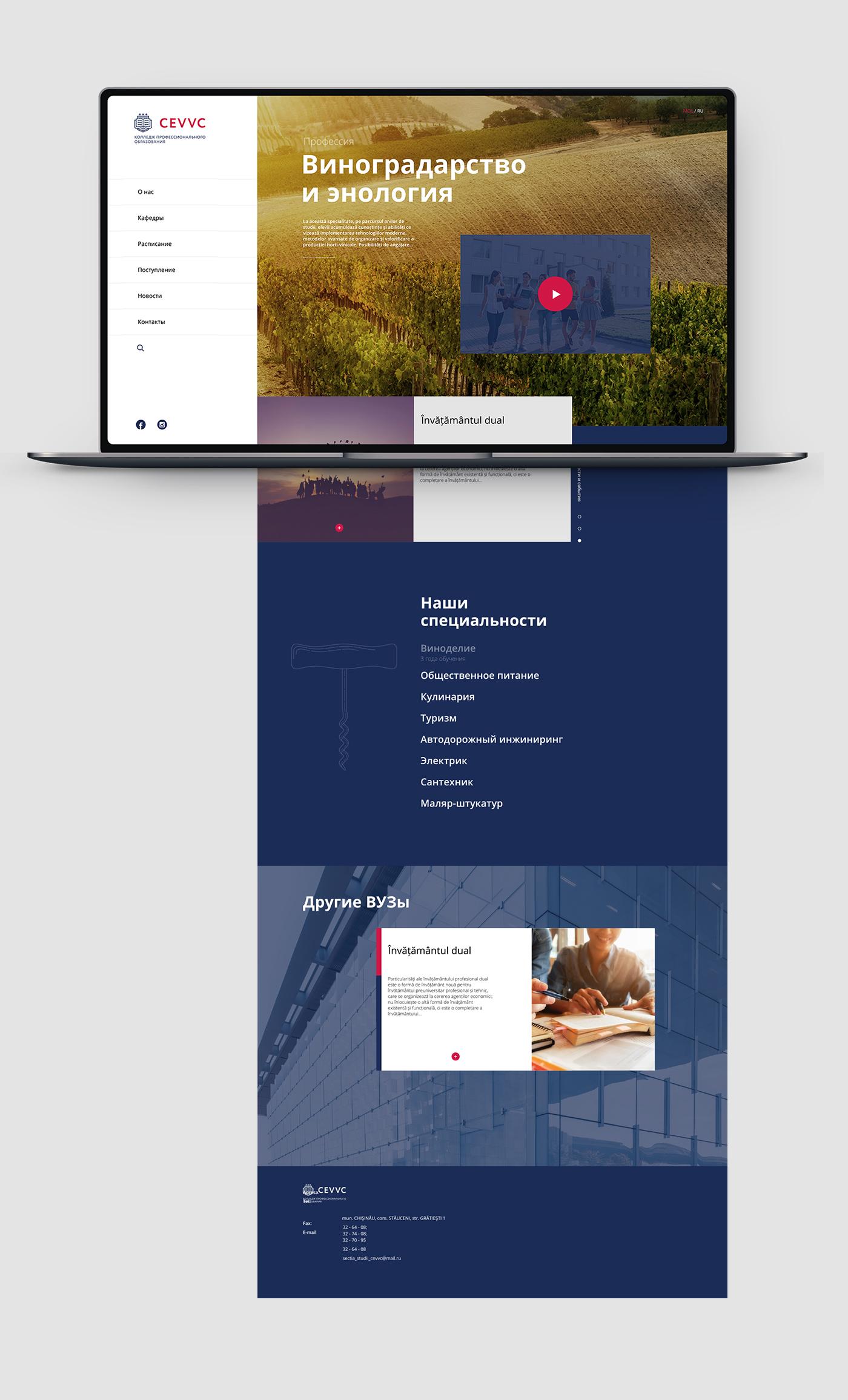 Разработка дизайна сайта колледжа фото f_3915e5f22b76535d.jpg