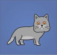 Кот линяет