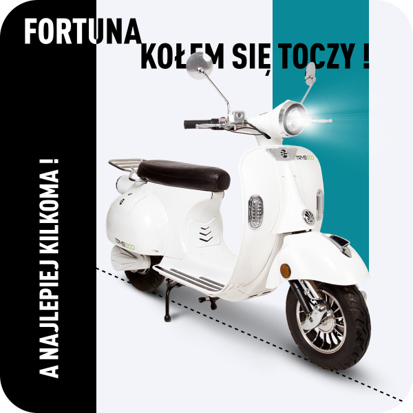Концепт сервиса по прокату и продаже скутеров в Польше