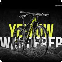 Yellow Wanderer