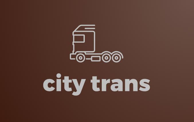 Разработка Логотипа транспортной компании фото f_7195e6e2e61f1d04.png