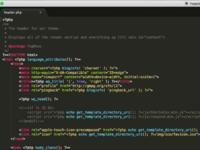 Интеграция на cms – wordpress (профессиональная тема)