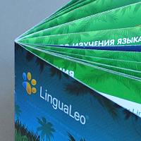 lingua leo | брошюра