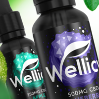Wellicy CBD Vape Juice