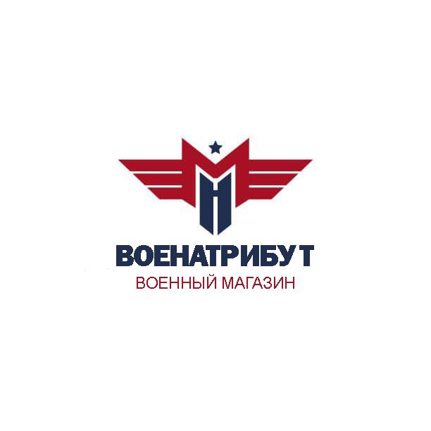 Разработка логотипа для компании военной тематики фото f_319601bcd460cabb.png