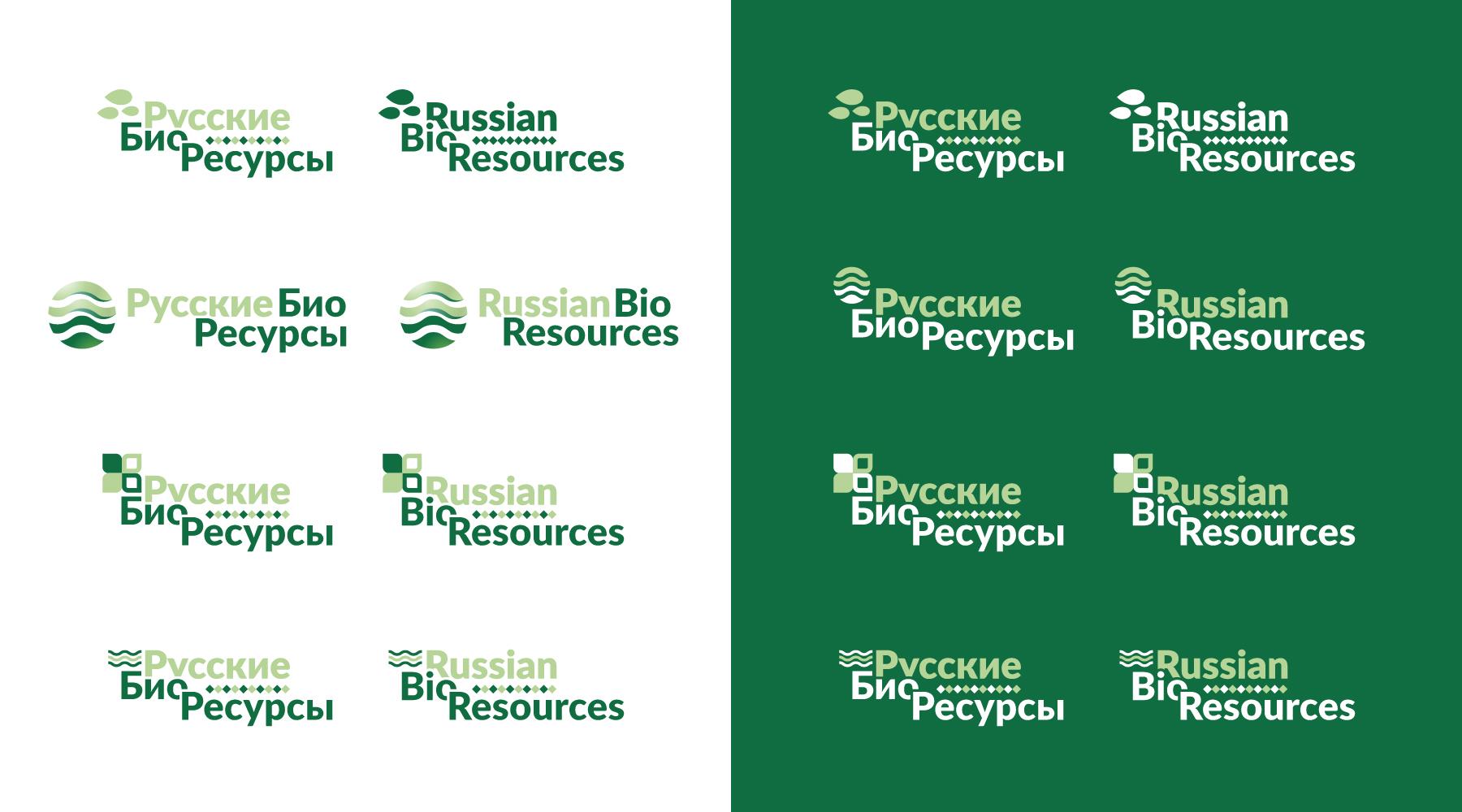 Разработка логотипа для компании «Русские Био Ресурсы» фото f_30558f0dccebda7b.jpg