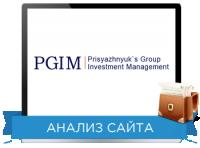 Юзабилити сайта: PGIM Направление: Инвестиционная компания