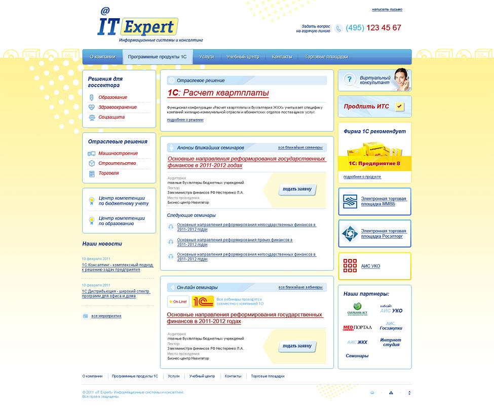 IT-Expert