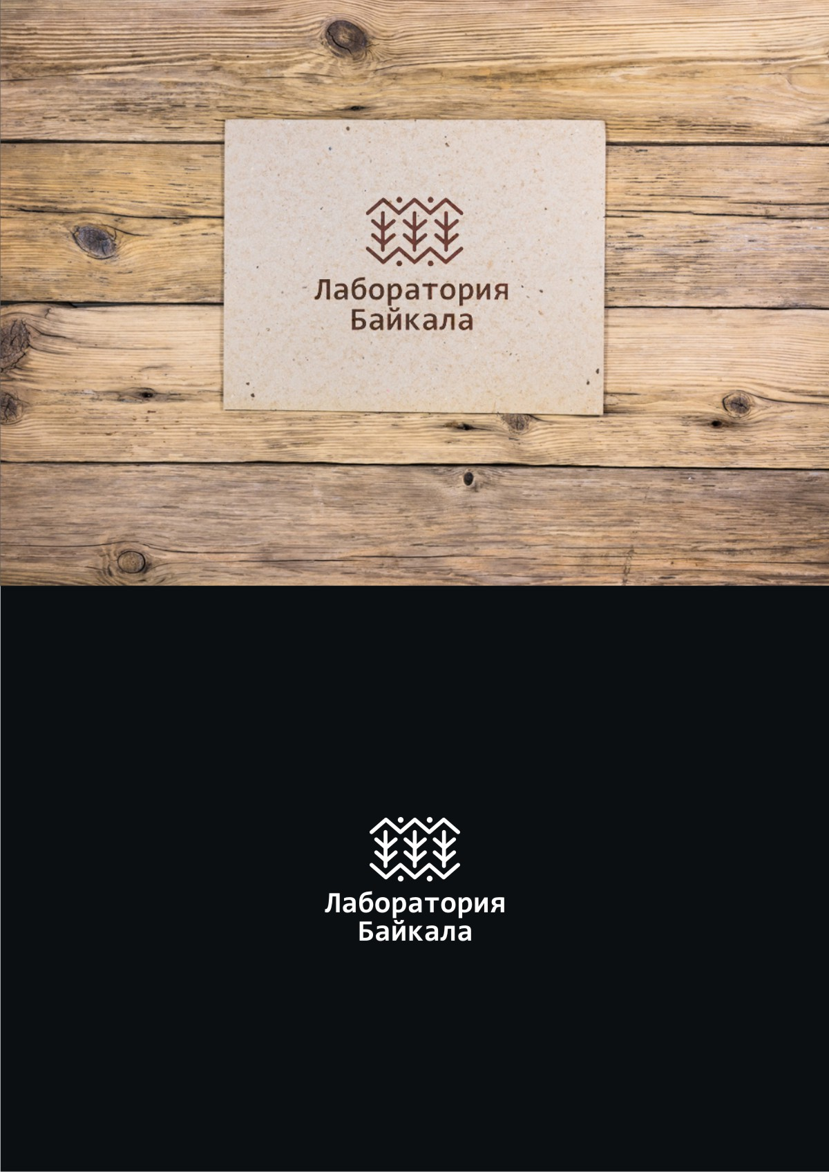 Разработка логотипа торговой марки фото f_210596b0d26a9dd8.jpg
