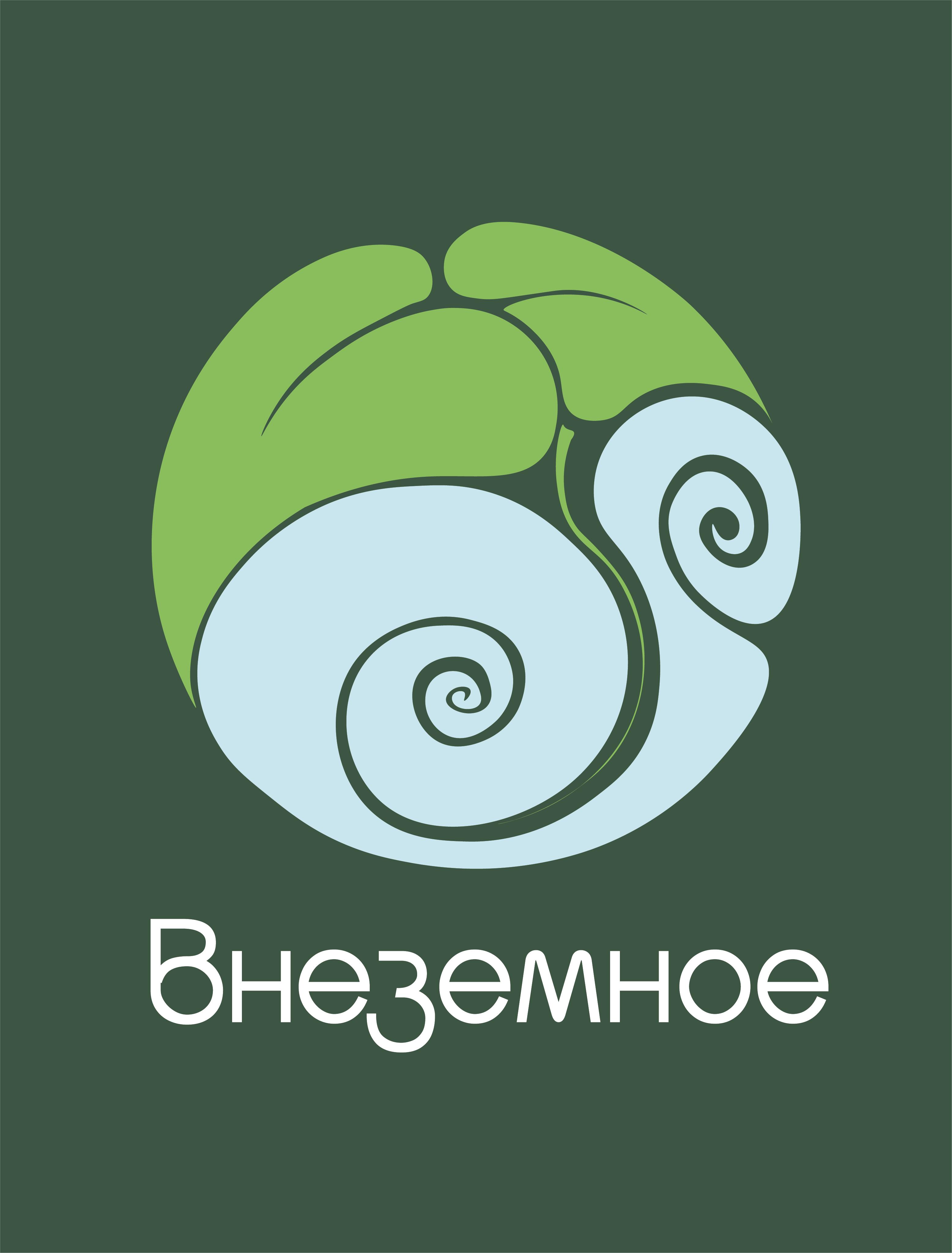 """Логотип и фирменный стиль """"Внеземное"""" фото f_0255e7c2d038fed2.png"""