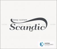 Лого Scandic2