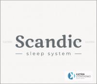 лого Scandic