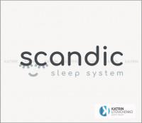 Лого Scandic1