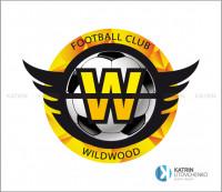 Логотип футбольного клуба.
