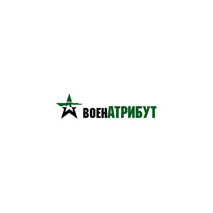 Разработка логотипа для компании военной тематики фото f_9286027e55a39910.jpg