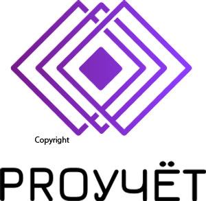 Разработка логотипа с фирменным знаком для Бухгалтерской ком фото f_6675f9579714707d.jpg