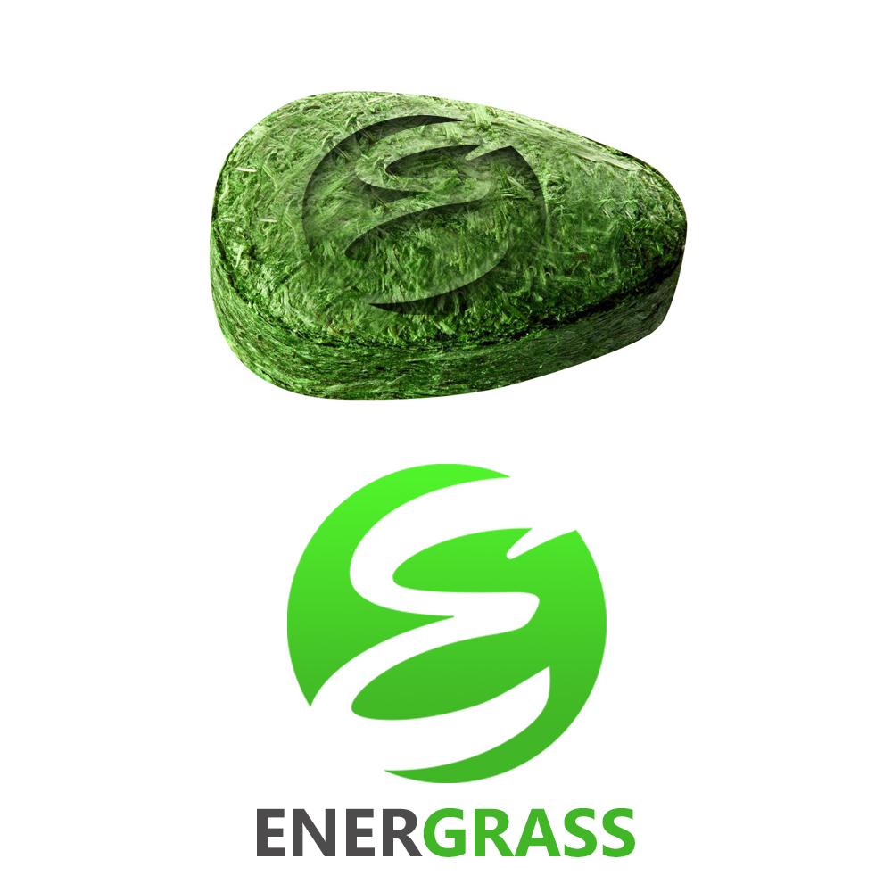 Графический дизайнер для создания логотипа Energrass. фото f_5765f86bc229a964.jpg
