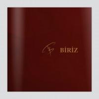 Презентация Biriz