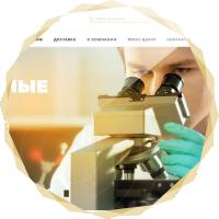 """Адаптивный сайт - оборудование и расходники для хим лаборатории """"TERMI"""""""