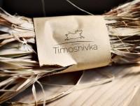 • [ART—DIRECTOR]__Timoshivka system [logo & storytelling]