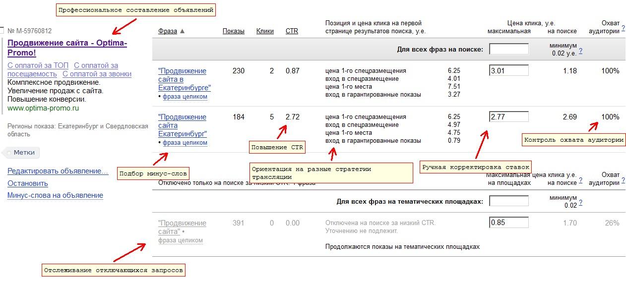 Профессиональная настройка и мониторинг Яндекс.Директ