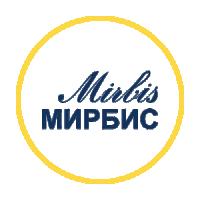 Рекламные кампании для продвижения MBA в институте МИРБИС