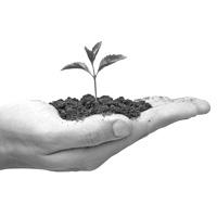 ТЗ на портал экологического мониторинга Краснодарского края