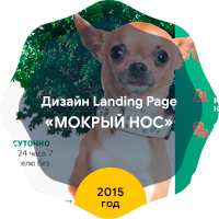 "Дизайн Landing Page ""Мокрый нос"" 2015 год"