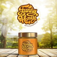 "Логотип ""Funny honey"""