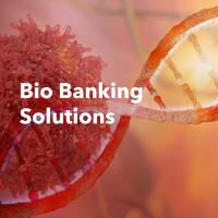 Разработка сайта для Bio Banking Solution