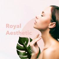 Разработка корпоративного сайта для немецкой клиники эстетического омолаживания и пластической хирургии   ROYAL AESTHETI