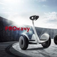 Разработка логотипа и фирменного стиля для компании Proкачу