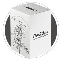 Коробка для flor2u.ru