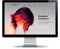"""Дизайн сайта """"Профессиональные краски для волос"""""""