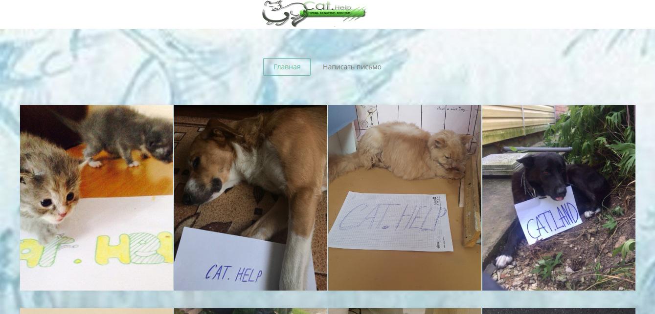 логотип для сайта и группы вк - cat.help фото f_00059dc64a221385.jpg