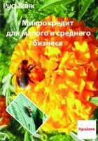 """Конкурсная работа для банка """"РУСЬ""""4"""