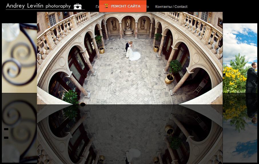 Ремонт сайта. Андрей Левитин и Притула