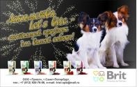 модуль Brit d  в журнал (собаки)