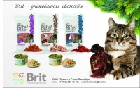 модуль Brit d в журнал (кошки)