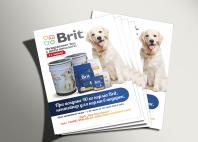 """Рекламный макет для компании """"Brit"""""""