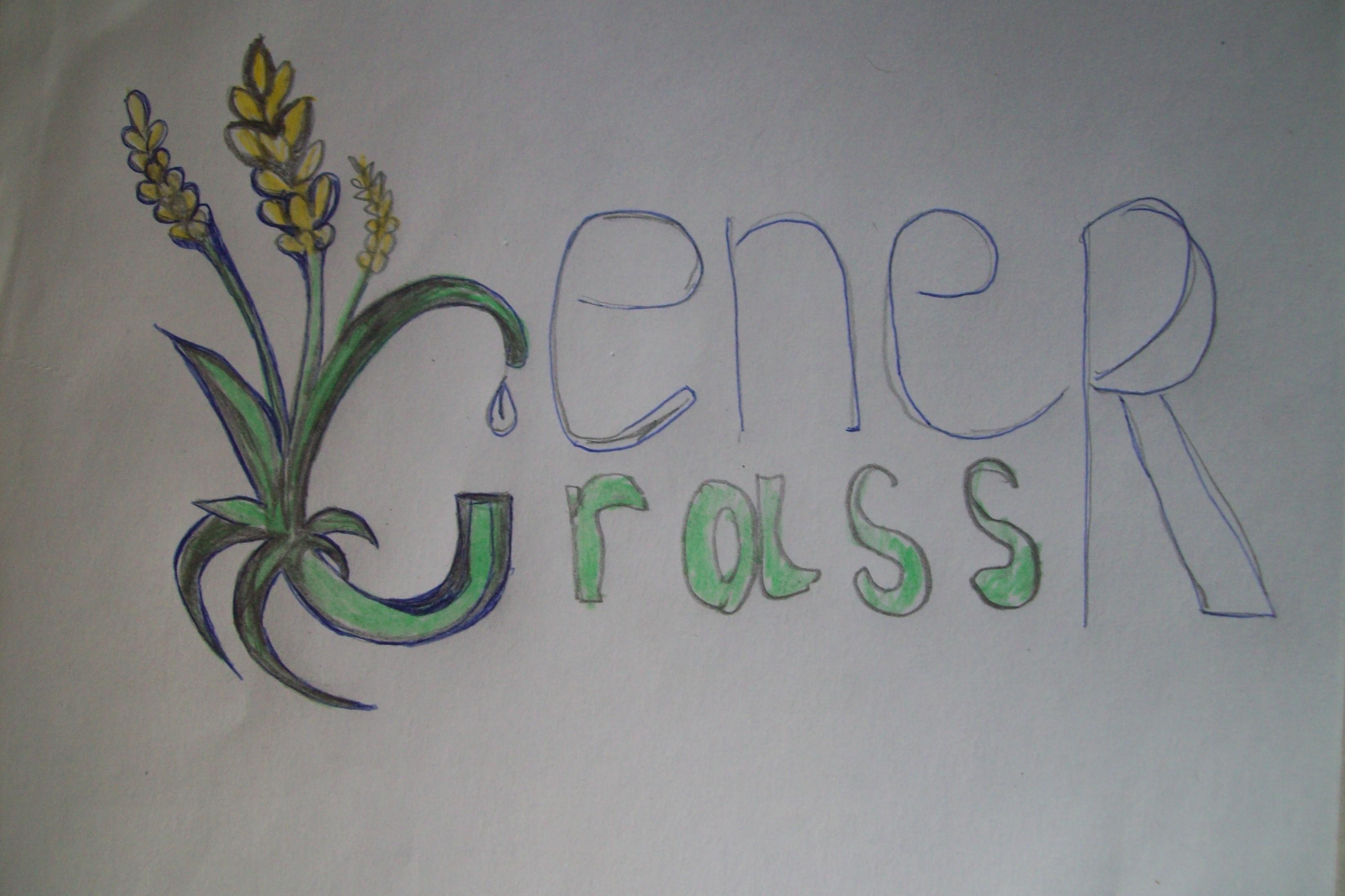 Графический дизайнер для создания логотипа Energrass. фото f_9065f85864a82c53.jpg