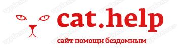 логотип для сайта и группы вк - cat.help фото f_64259d9c77a8e574.png