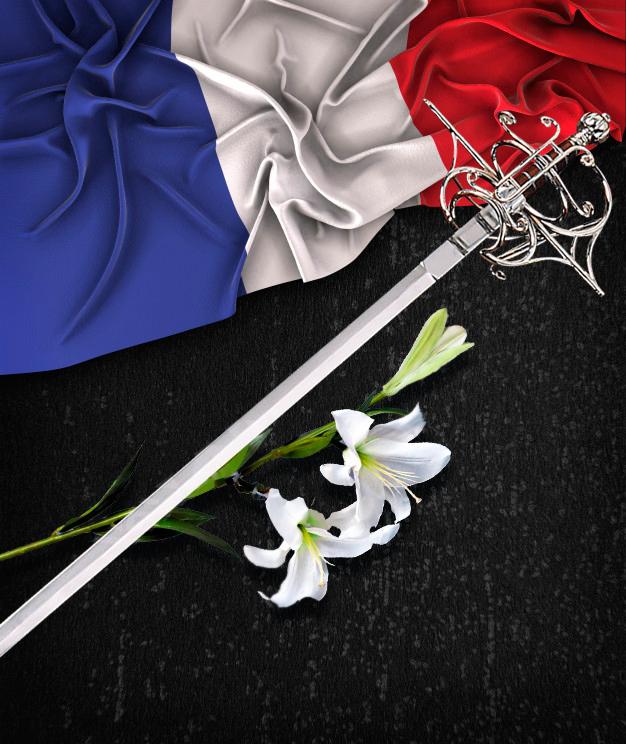 """Обложка """"Знамя Франции: Лилия и шпага"""""""