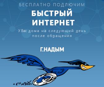 Баннер компании, продающей услуги скоростного интернета в г. Надым  (1)