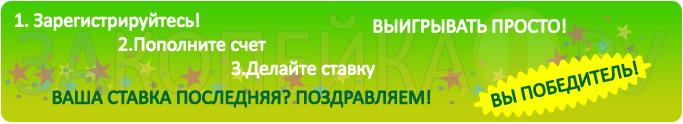 "Баннер сайта ""Закопейка"""