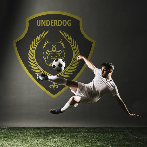 Футбольный клуб UNDERDOG - разработать фирстиль и бренд-бук фото f_0015caf32832ccb4.jpg