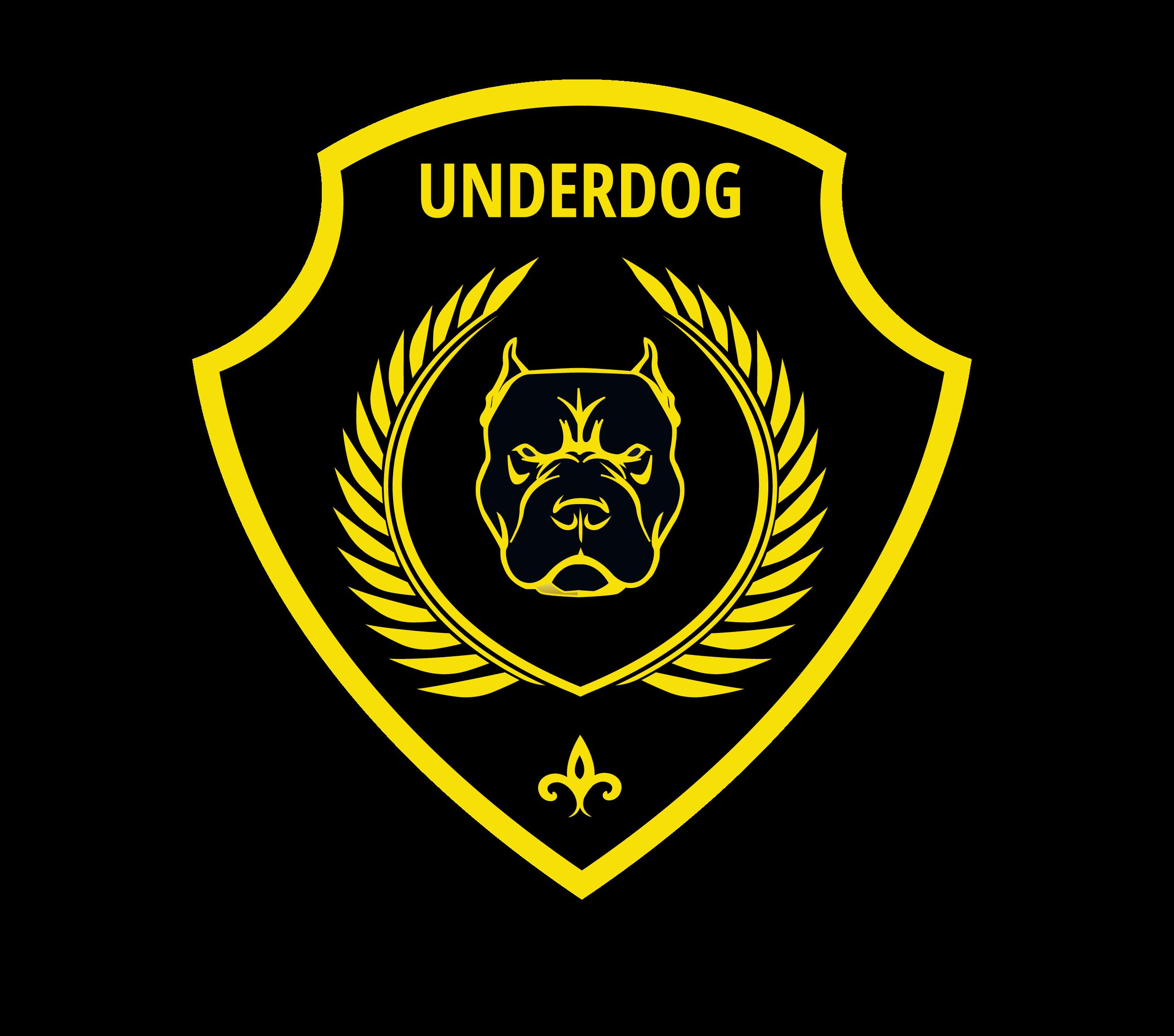 Футбольный клуб UNDERDOG - разработать фирстиль и бренд-бук фото f_4335caf308f10bc1.png