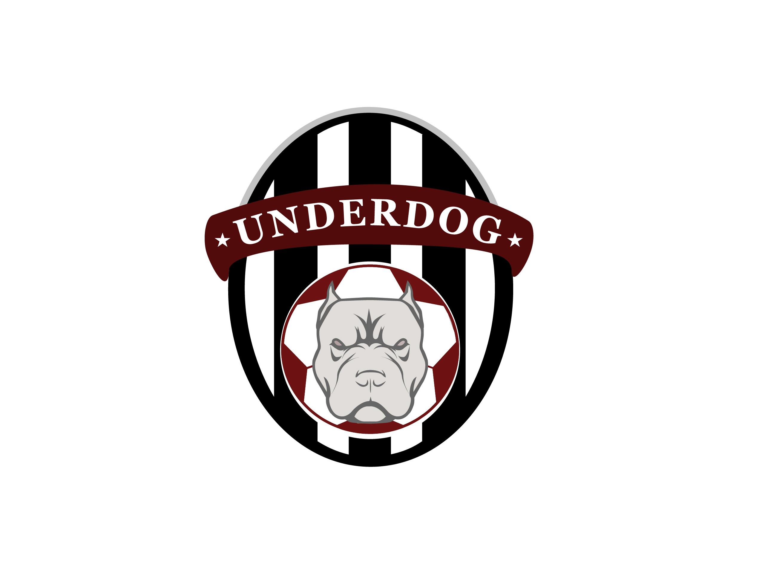 Футбольный клуб UNDERDOG - разработать фирстиль и бренд-бук фото f_7095caf8cc7d1421.jpg