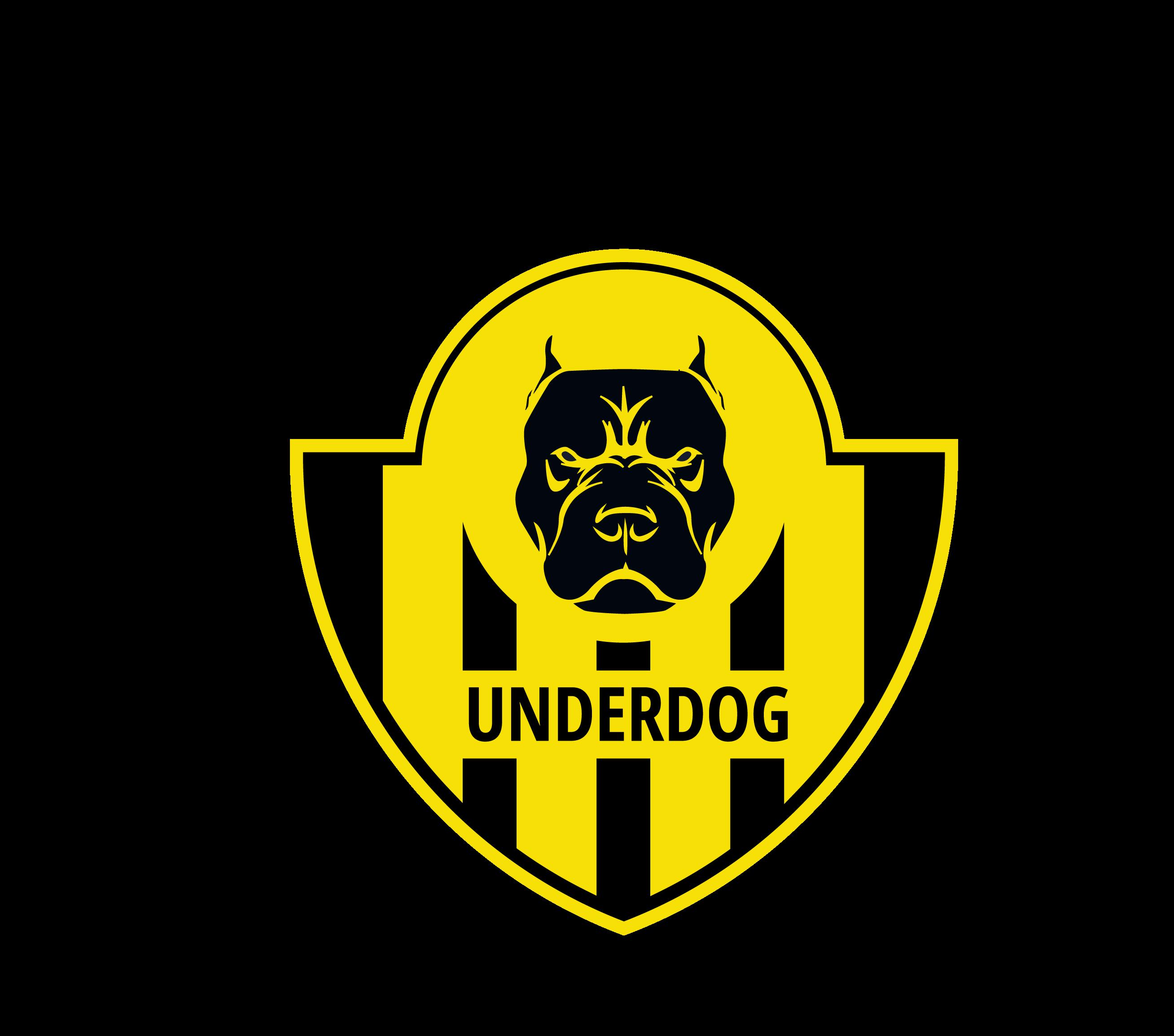 Футбольный клуб UNDERDOG - разработать фирстиль и бренд-бук фото f_8465caf307ad6416.png